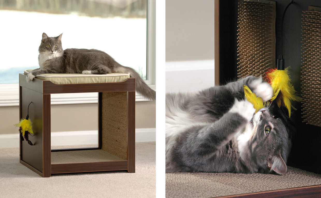 Modern cat furniture, living room, cat toys