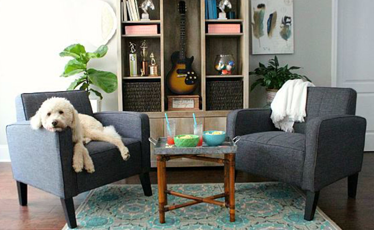 Accent chair, upholstered chair, dog bed, pet, furniture