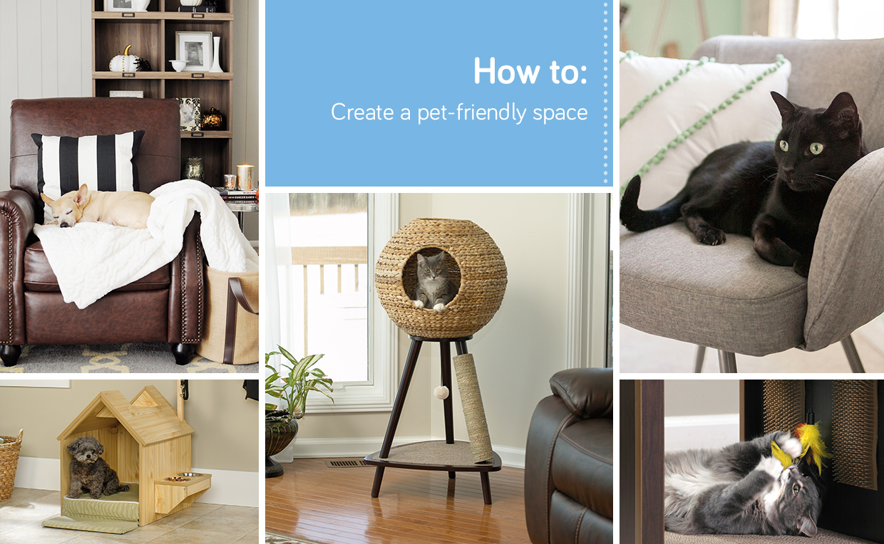 Décor tips for your furry friends