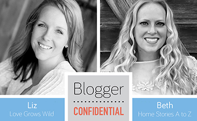 Blogger Confidential Liz and Beth