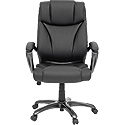 Deluxe Leather Executive Chair 412186