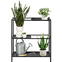 Plant Stand 423677