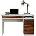 Modern Home Computer Desk with Storage 425845