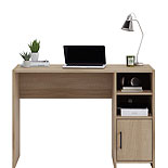 Oak Finish Computer Desk with Storage 429357